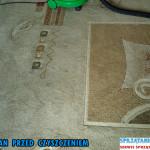 czyszczenie-dywanow-wykladzin