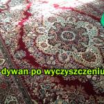 dywan-wyczyszczony