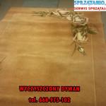 pranie-dywanow-sprzatanio-668975102